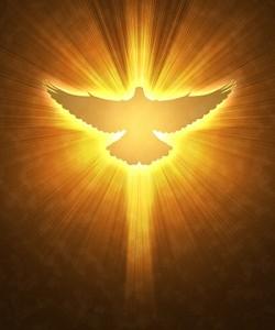 Duch Święty gołąb